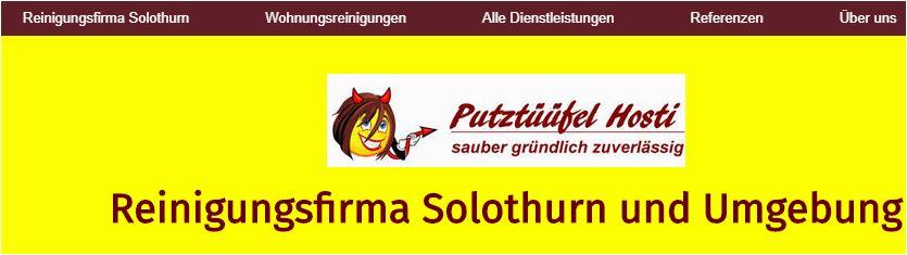 putzfirma solothurn
